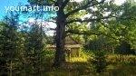 Шикарный участок под строительство на лесной опушке