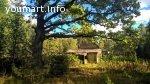 Шикарный земельный участок на лесной опушке под строительство