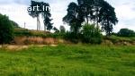 Земельный участок 16 соток на берегу реки Многа в Черёхе